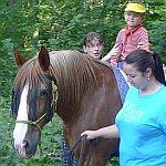 Vojta na koni